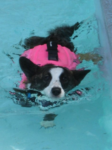 Winnie staying cool