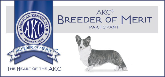 Rocky Ridge Kennels is proud to be listed by the AKC as Breeder of Merit